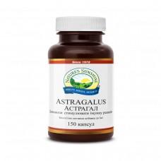 Астрагал | Astragalus