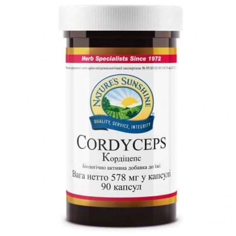 Кордицепс | Cordyceps NSP
