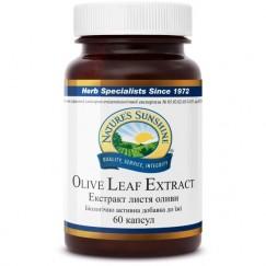 Экстракт листьев оливы | Olive Leaf