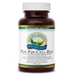 Пау Пау | Paw Paw Cell - Reg