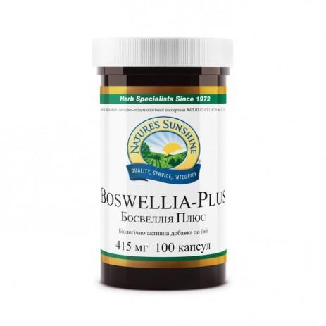 Босвеллия Плюс НСП | Boswellia Plus NSP